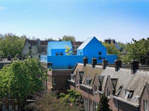 Blauw huis in wijk